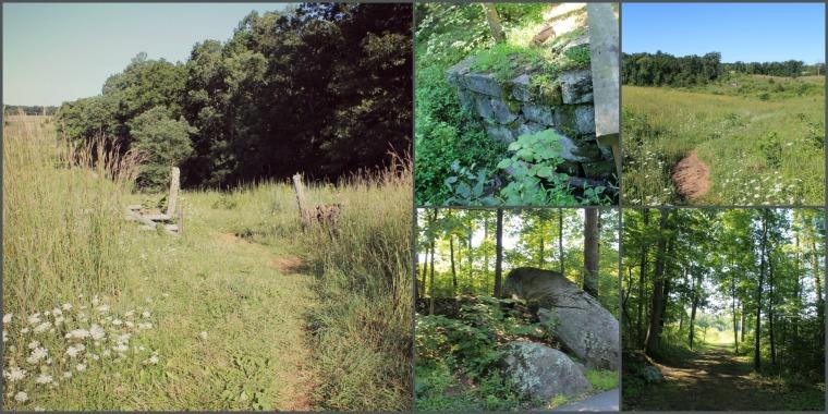 Gettysburg College Blog